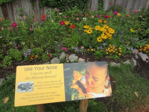 Sensory Garden at Seneca Park Zoo